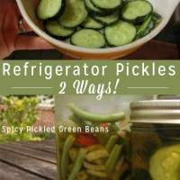 If you're new to pickling, refrigerator pickles are a great way to start. No hot water bath - just delicious pickles!