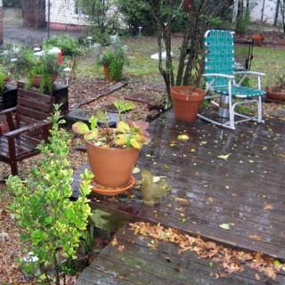 Friday Roundup: Umbrellas and Galoshes