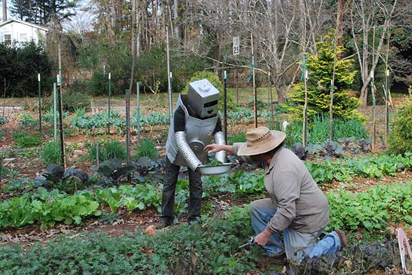 What do you get when you combine robotics and small-scale organic farming? Atlanta foodie Lady Rogue is examining that very question with her growBot project.