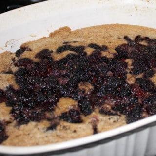Vegan Mulberry Buckle