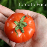 Homemade Tomato Face Scrub (video!)