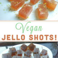 You don't need boring old Jello to make Jello shots! Here's how to use agar agar to make delicious vegan jello shots!