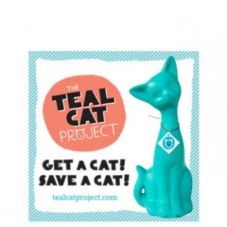 The Teal Cat Project