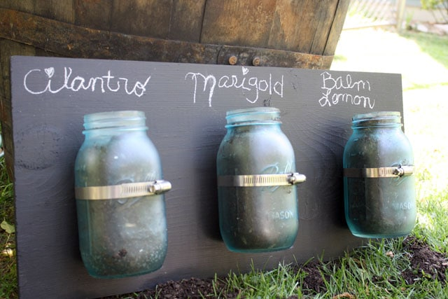 These hanging mason jar planters are great to get you a little vertical growing space or for keeping plants away from cats who think houseplants are treats for them.