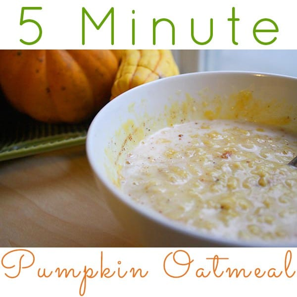 Hello, fall! This pumpkin oatmeal only takes five minutes to make and is super filling and delicious!