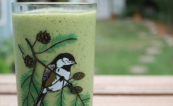 40 Days of Green Smoothies: Bird Smoothie