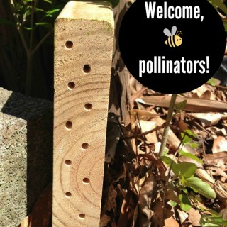 How to Make a Bee Habitat out of Scrap Wood