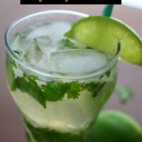 This cilantro mojito recipe demands that you take it out in the sun for sipping!