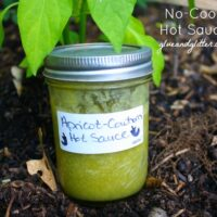 This is a super quick and easy green hot sauce recipe. No roasting or boiling required!