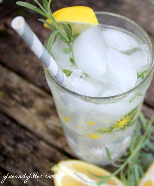 glass of lavender lemon gin and tonic on a picnic table with sprigs of lavender and lemon slices