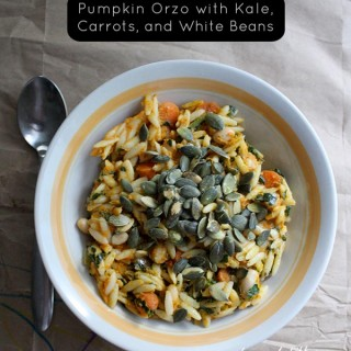 Easy Pumpkin Orzo with Kale, Carrots, & White Beans