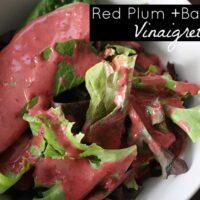Red Plum Basil Vinaigrette