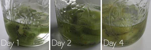 Kiwi Gin, infusing