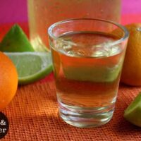 close-up of a shot glass of citrus gin next to oranges, limes, and lemons