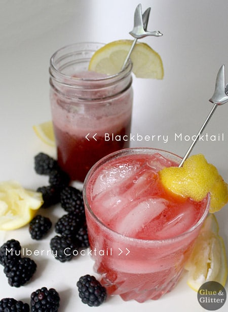 a blackberry mocktail next to a mulberry cocktail, so you can see the color difference