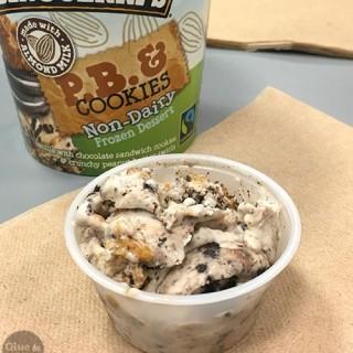 A Ben & Jerry's Vegan Ice Cream Adventure