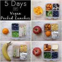 I took pictures of my son's packed lunches every morning for a week. Behold: a week of packed lunches!