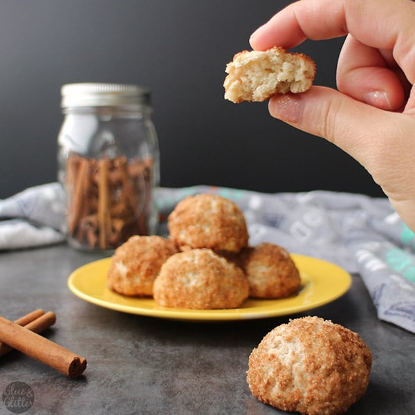 Chonut Holes deliver so many of my favorite things: doughnutty goodness, churro flavors, and a portmanteau. These churro doughnut holes have it all!