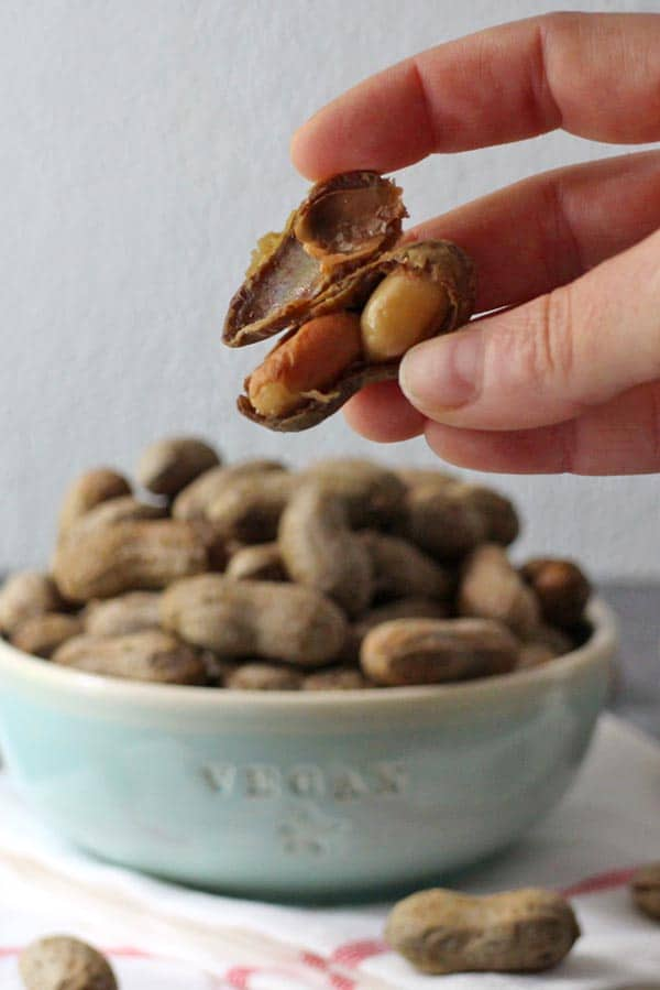 close-up of a hand holding an open boiled peanut. bowl of boiled peanuts in the background