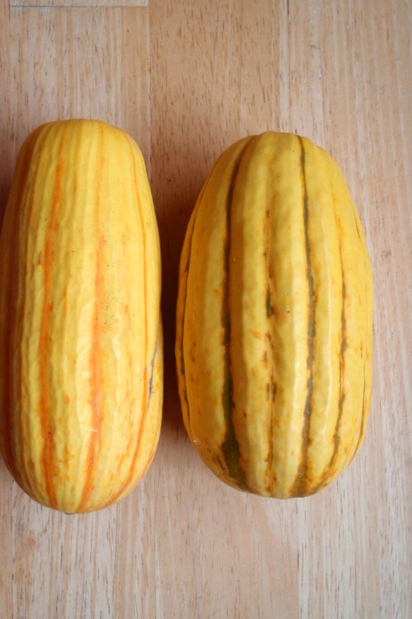 pair of delicata squash on a wooden table