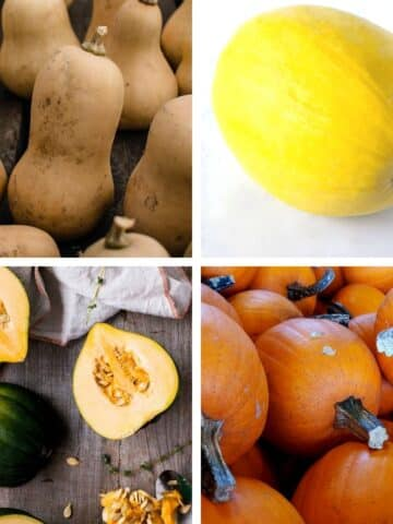 image collage of different winter squash