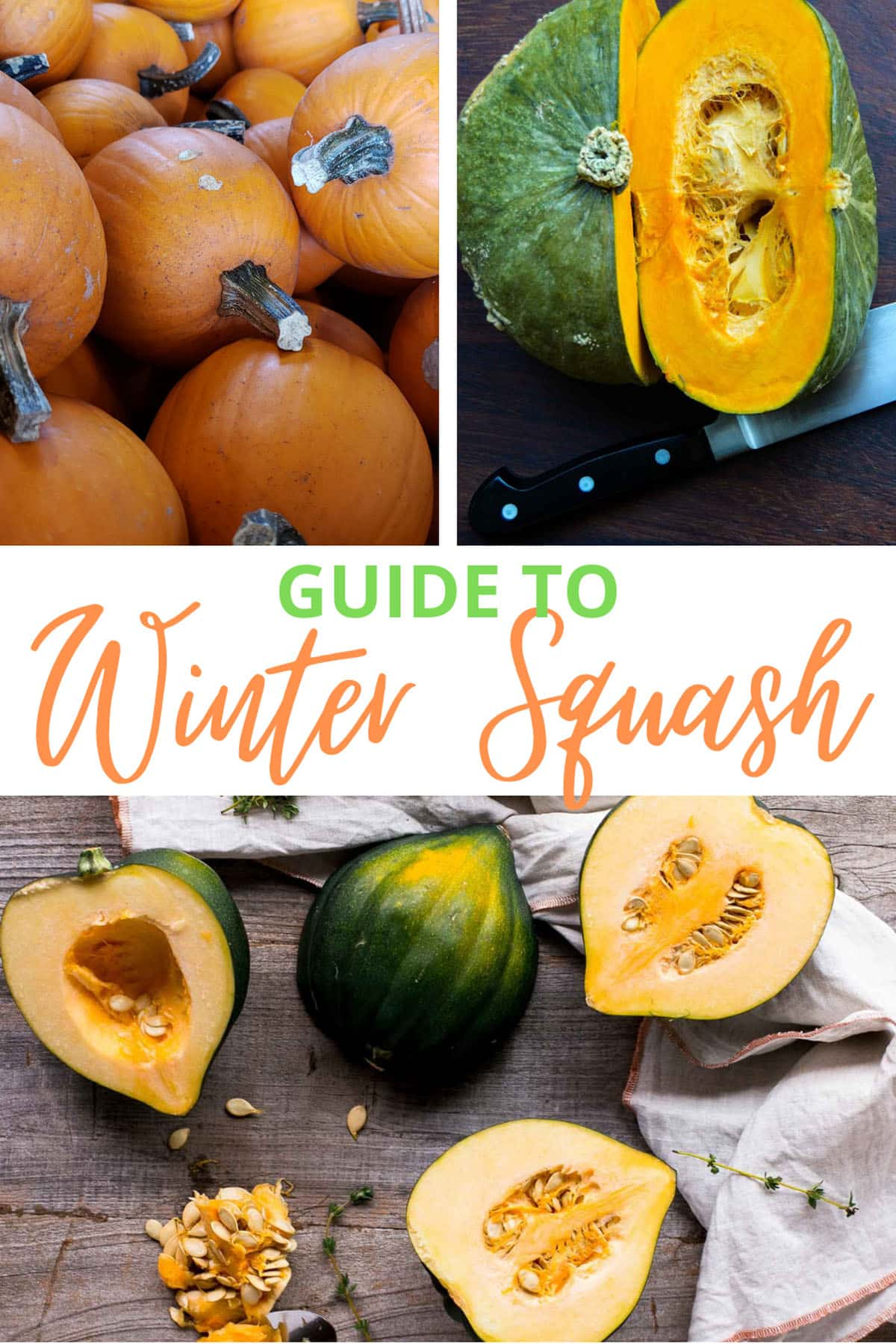 image collage of different winter squash with a text overlay