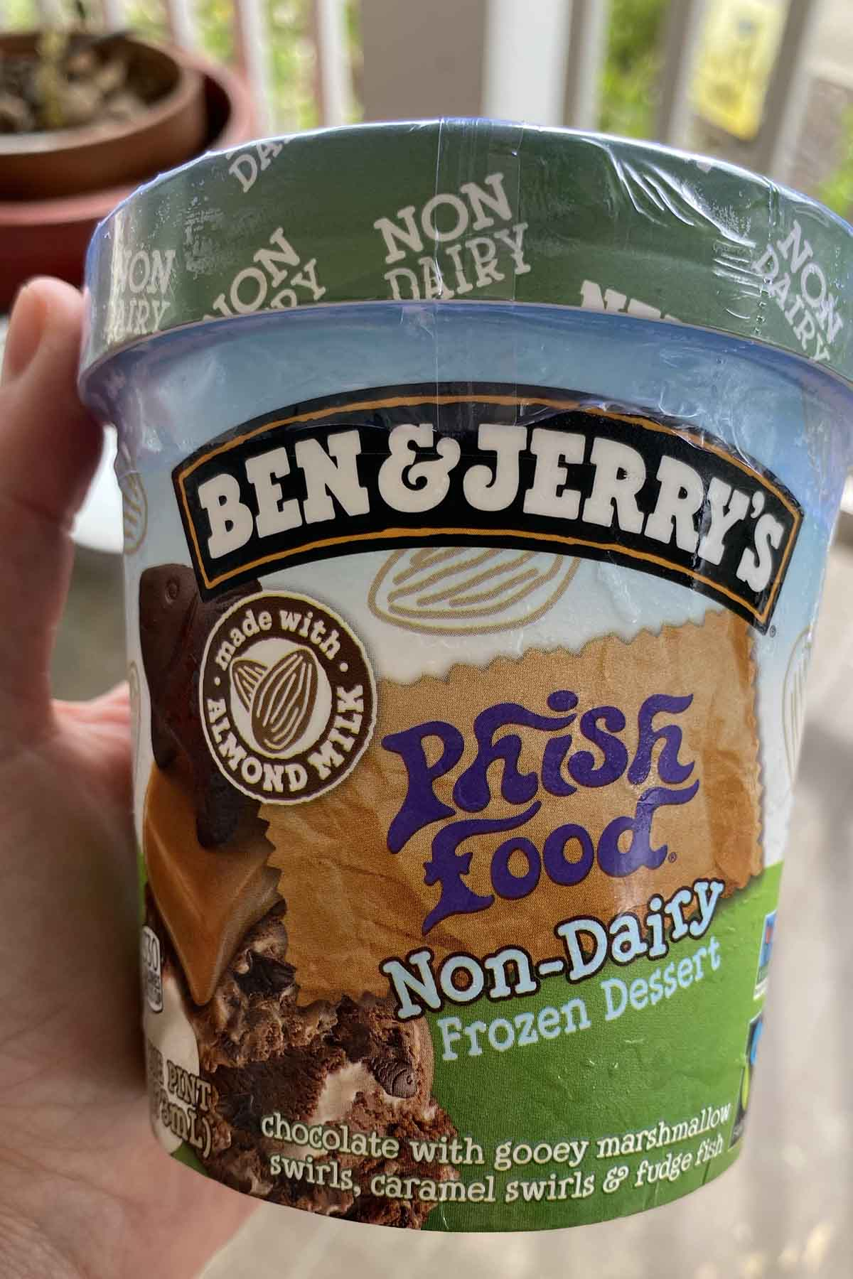 hand holding a pint of Ben & Jerry's Non-Dairy Phish Food